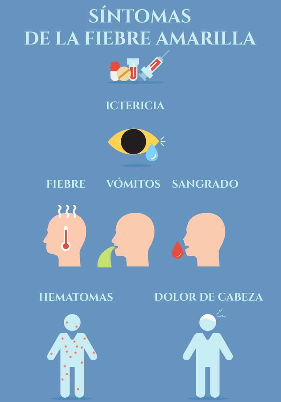 sintomas de la fiebre amarilla