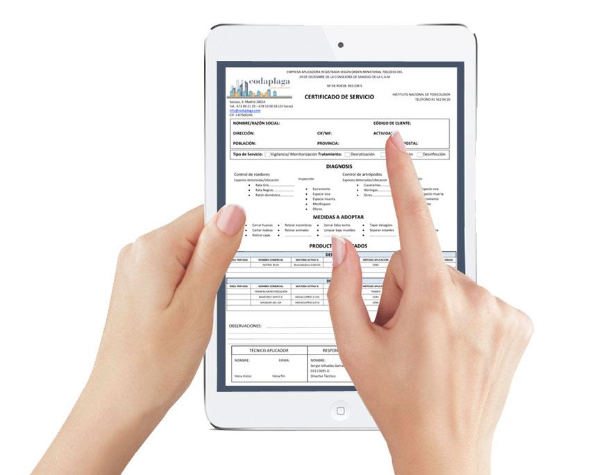 certificado control de plagas codaplaga