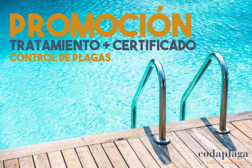 tratamiento obligatorio control de plagas piscinas comunitarias